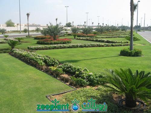 Al Bateen Palace of H.H. Sheikh Khalifa bin Zayed Al Nahyan