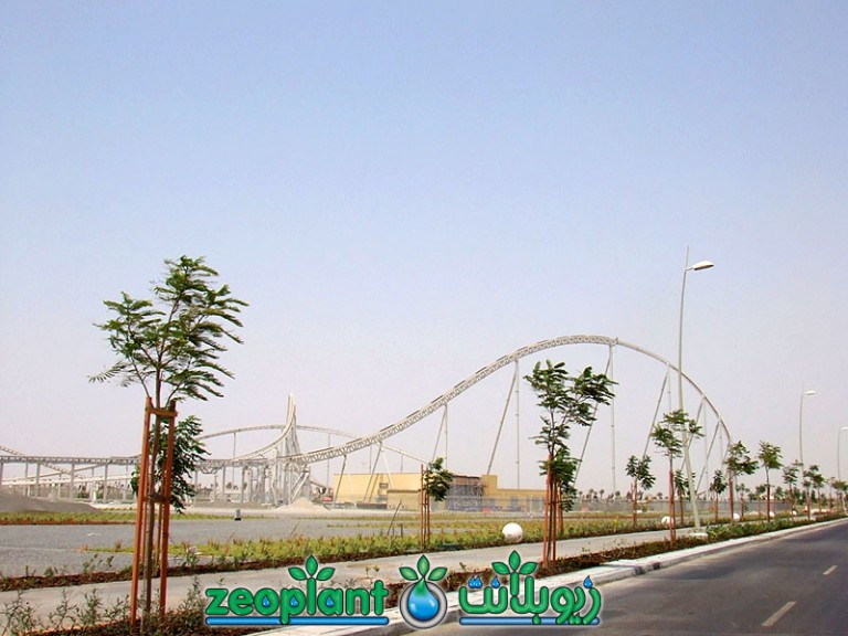 Shuttle Bus Link Road – Yas Island