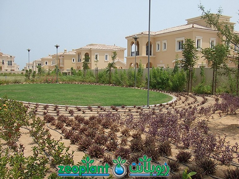 Umm Al Quwain Marina Project