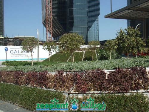 Abu Dhabi Financial Centre