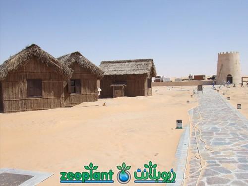 Al Khatim Desert Camp