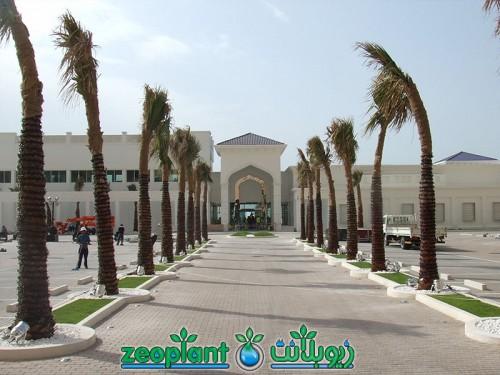 Meydan Beach Club