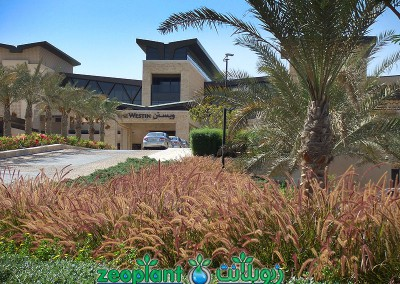 Westin Golf Resort
