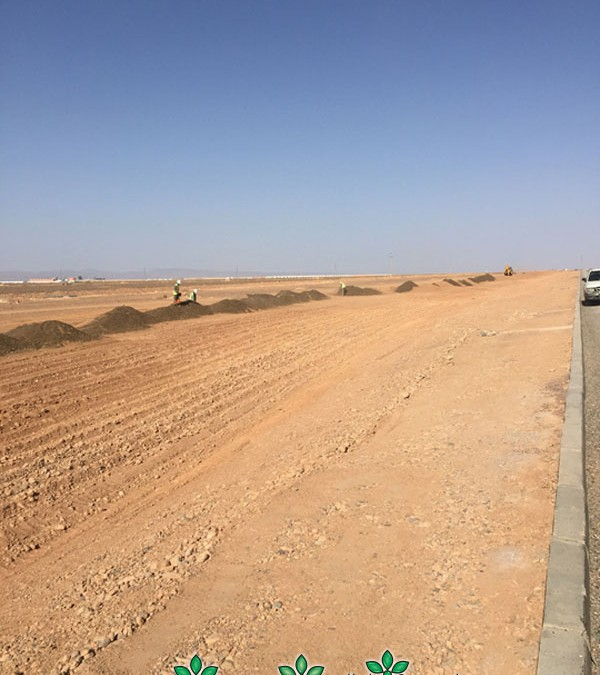 Moroccan Solar Programme – Morocco 2015