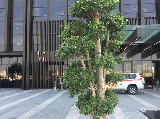 La Ville Hotel City Walk – Dubai 2016