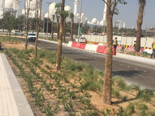 Memorial Park Abu Dhabi – 2016